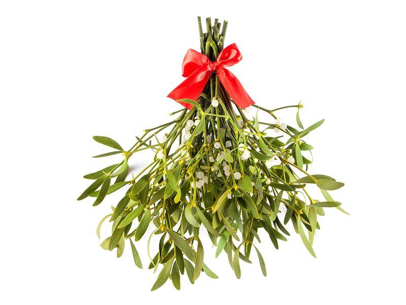 Mistel-julkyss-jultradition